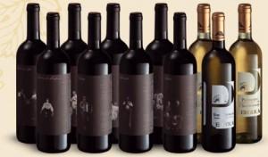 pergola bottiglie